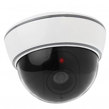Red Shield Dummy camera DWS-218